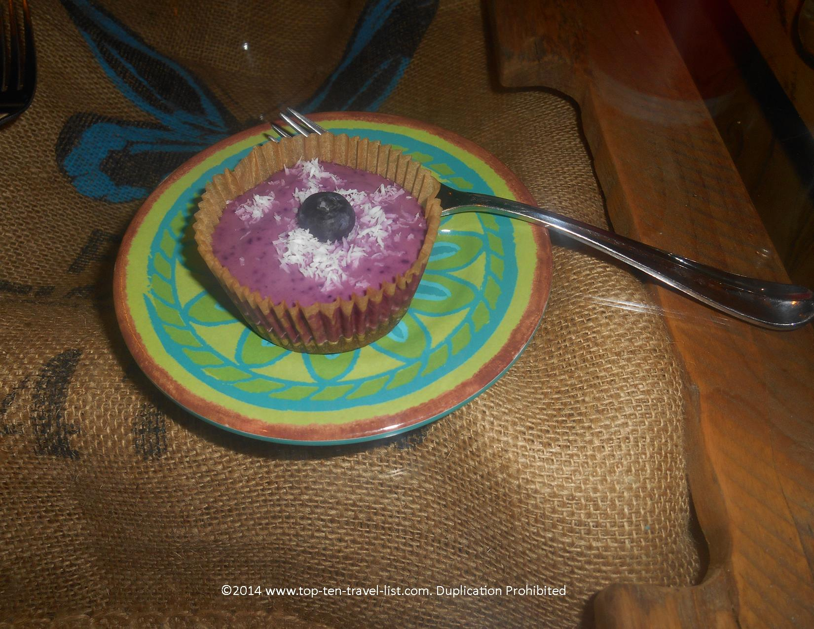 Raw blueberry cheesecake at Eco Beans in Tarpon Springs, Florida