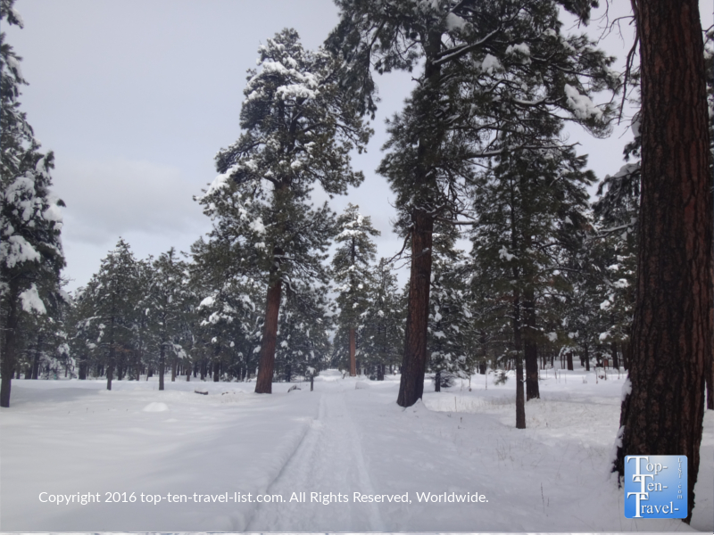 Wintry views at Fort Tuthill in Flagstaff, Arizona