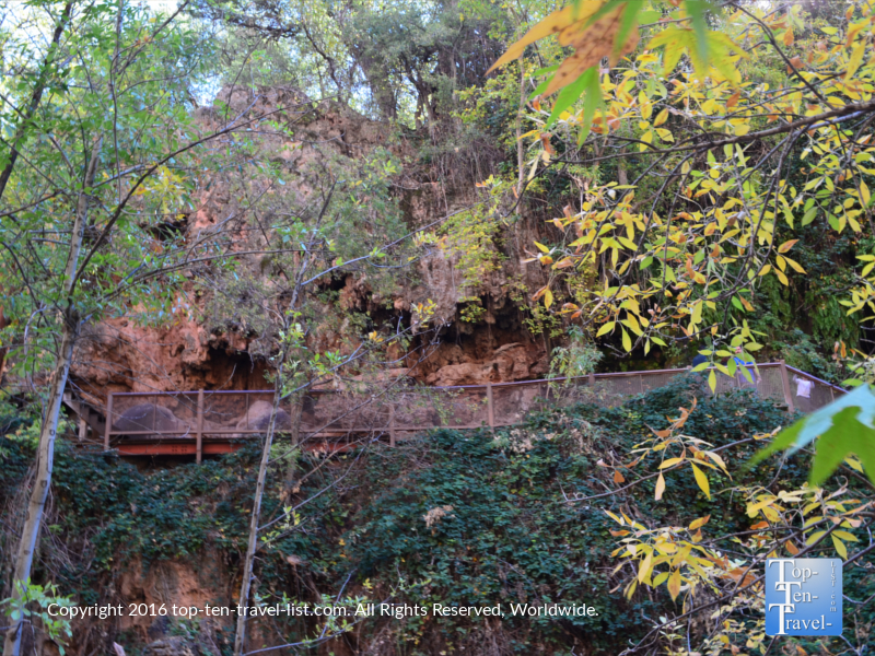 Hint of fall color along the Pine Trail at Tonto Natural Bridge State Park