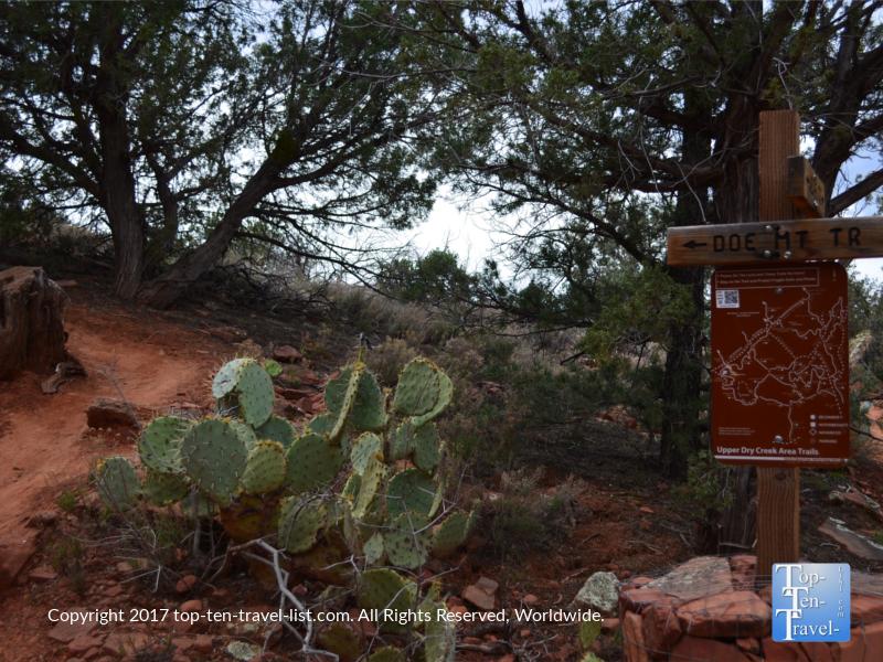 Doe Mountain trail sign in Sedona, Arizona