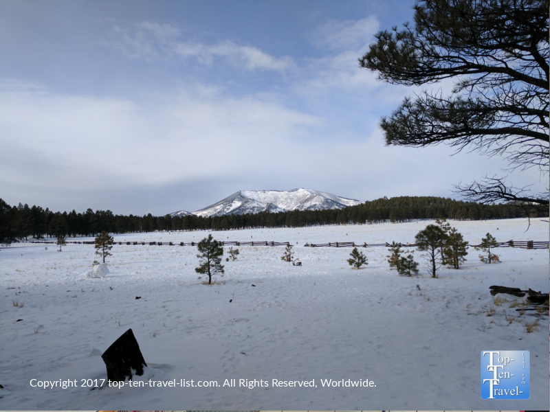Gorgeous snowy views at Kendrick Mountain Park in Flagstaff AZ