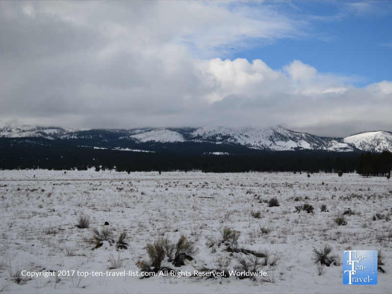 Snowy views of the san Fran Peaks from Bonito Meadow in Flagstaff
