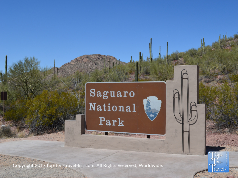 Saguaro National Park in Tucson AZ