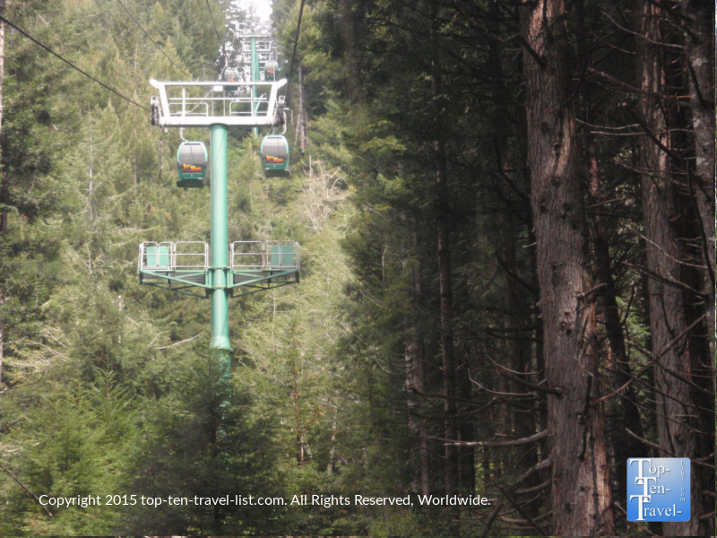 Trees of Mystery gondola ride above the coastal redwoods in Northern California