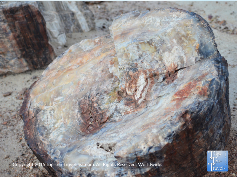 Ancient petrified wood at Petrified National Forest