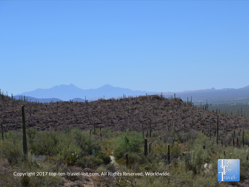 Scenic overlook at the Arizona Sonoran Desert Museum in Tucson