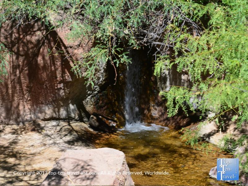 Waterfall at the Arizona Sonoran Museum in Tucson