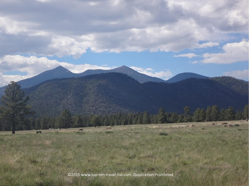 Pretty mountain scenery in Flagstaff, Arizona