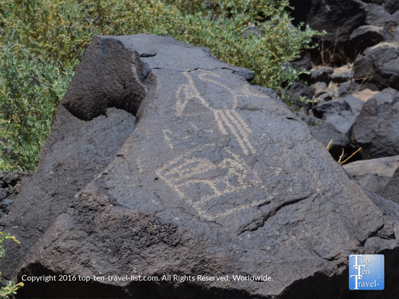 Petroglyphs at Petroglyph National Monument in Albuquerque NM