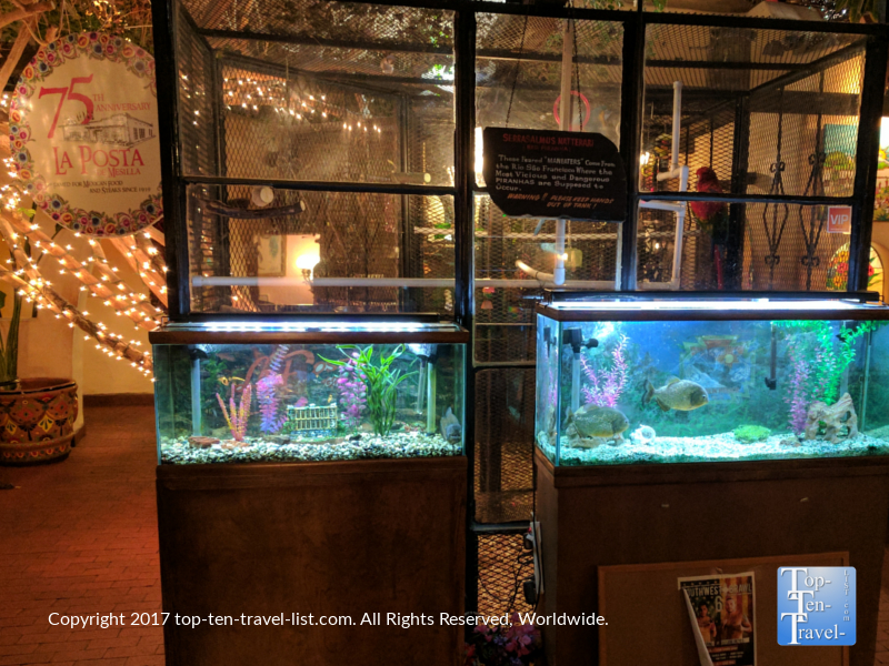 Fish tanks at La Posta in Las Cruces NM