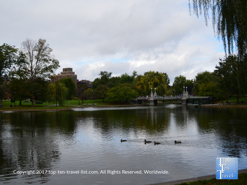 Peaceful lagoon at Boston Public Garden
