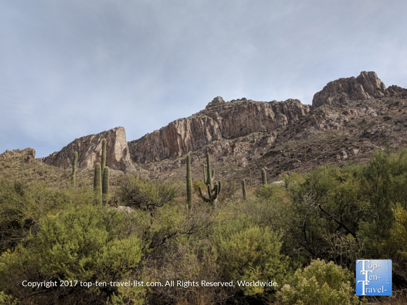 Pretty views of the mountains and Saguaro cacti at Sabino Canyon in Tucson, Arizona