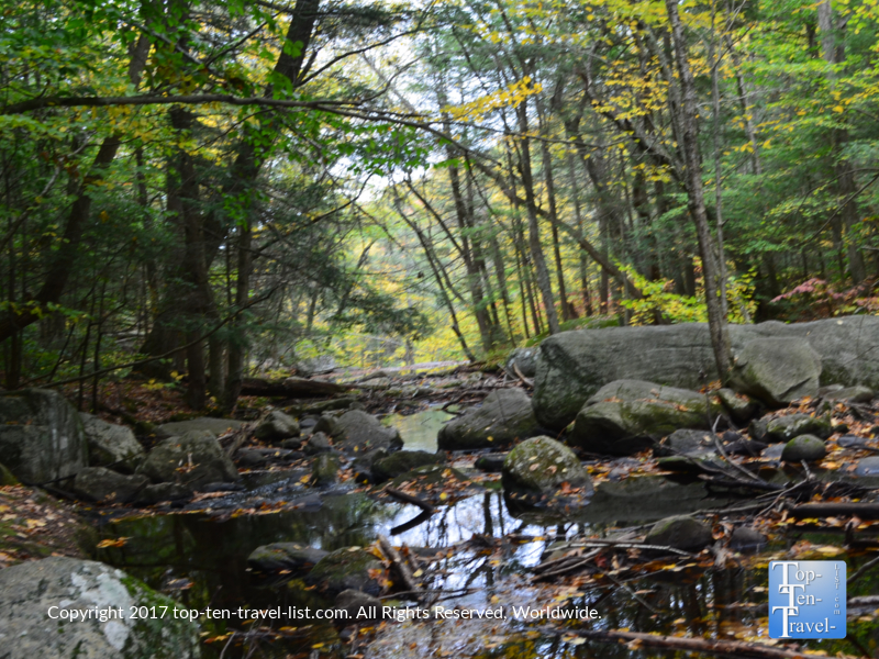 Pretty stream views along the Enders Falls trail in Connecticut