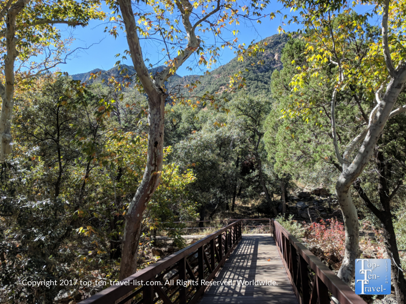 Madera Canyon - a peaceful nature oasis in Southern Arizona