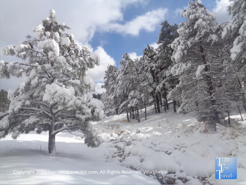 Snow covered park after a major winter storm in Kachina Village, Arizona