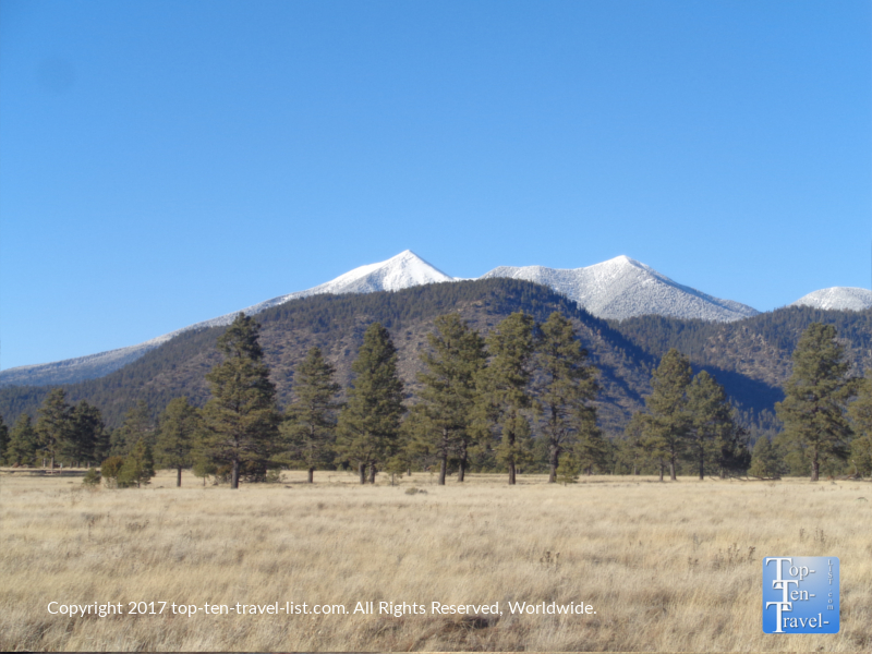 Pretty mountain scenery at Buffalo Park in Flagstaff, Arizona