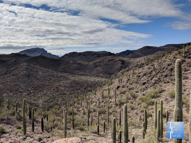 Gorgeous scenery along the Bowen Hidden Canyon trail at the JW Marriott Starr Pass Resort in Tucson, Arizona