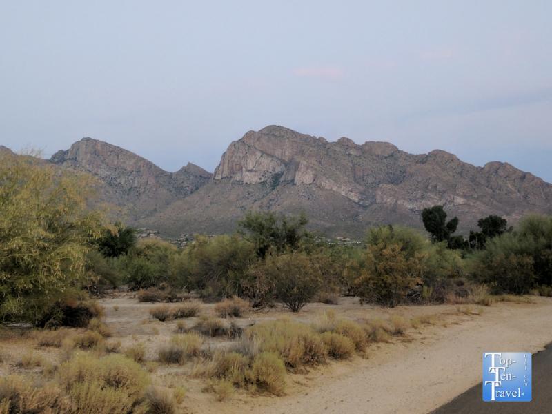 Canada del Oro Riverfront Park in Oro Valley, Arizona