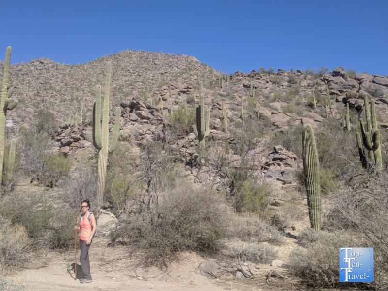 Hiking the Wild Burro trail in Tucson, Arizona