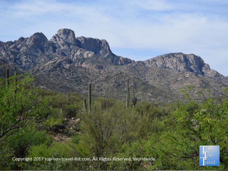 Incredible mountain views at Catalina State Park in Oro Valley, Arizona