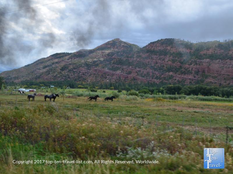 Beautiful views of the countryside seen from the Durango & Silverton Narrow Gauge Railroad