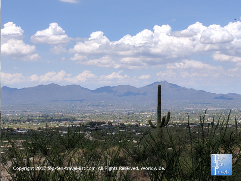 Scenic overlook from the Pima Canyon trail in Tucson, Arizona