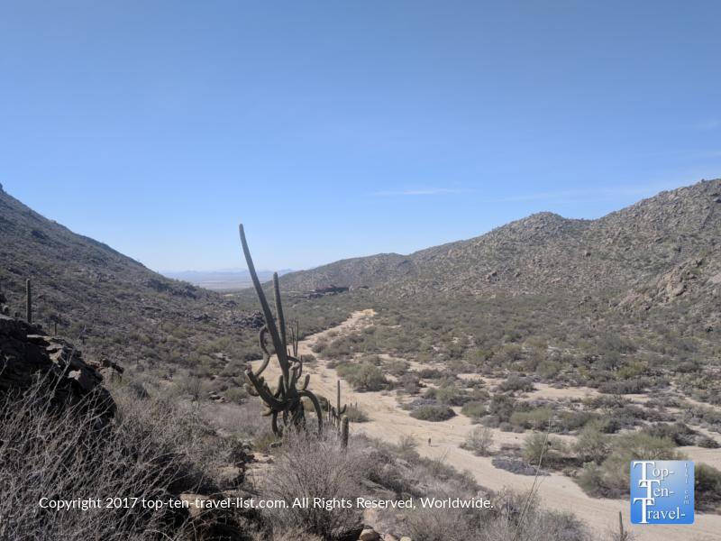 Wild Burro trail at the Ritz Carlton at Dove Mountain in Marana, Arizona