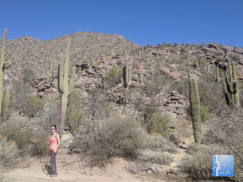 Hiking the Wild Burro trail near Tucson, Arizona