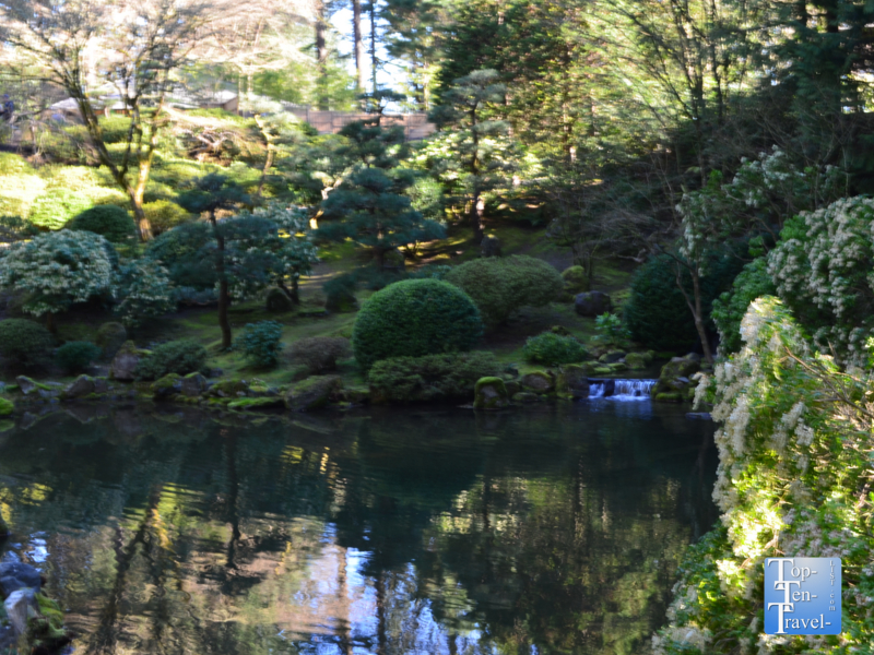 Peaceful pond at the Portland Japanese Garden