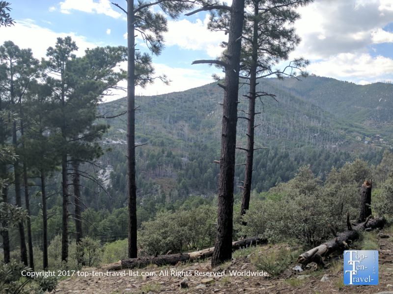 Pretty mountain views along the Marshall Gulch trail at Mt. Lemmon