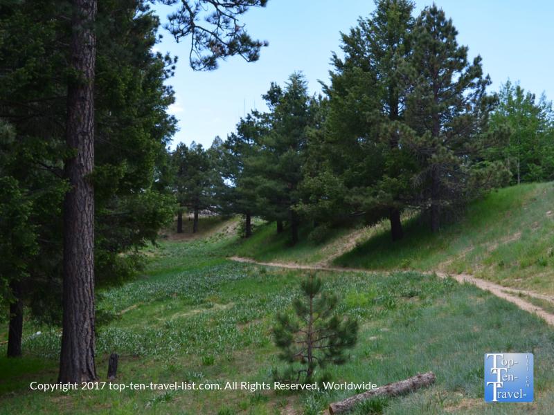 The gorgeous Meadow trail at Mt Lemmon near Tucson, Arizona