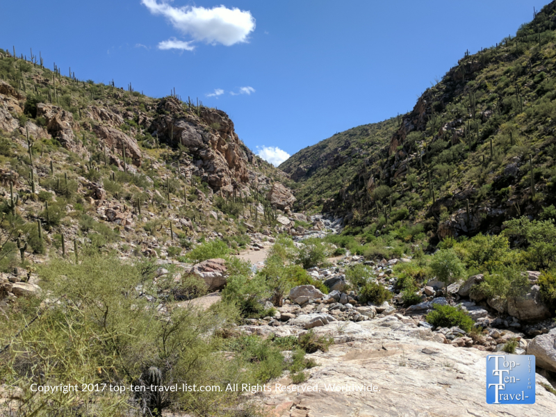 Scenery along the Tanque Verde hike in Tucson, Arizona