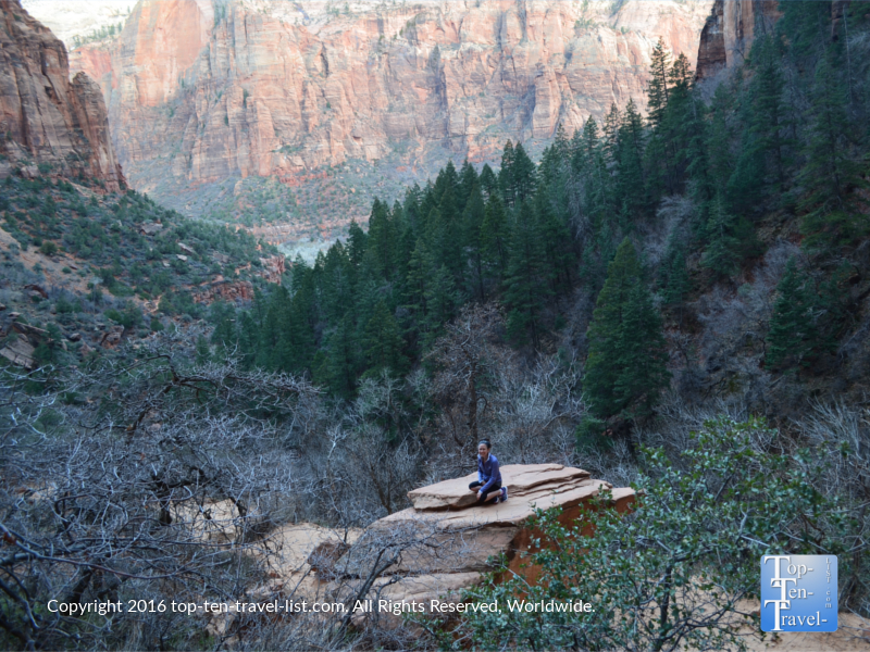 Gorgeous scenery along the Emerald Pools trail at Zion National Park in Utah