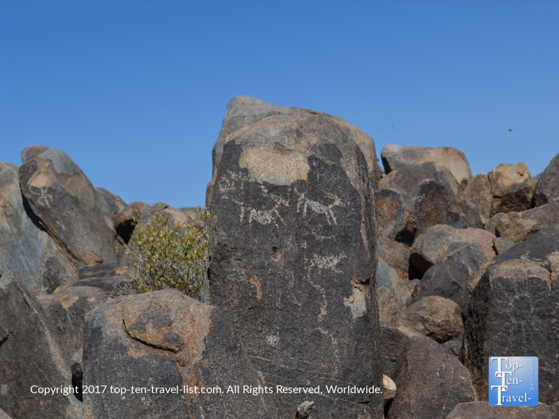 Ancient pictographs at Saguaro National Park in Tucson, Arizona