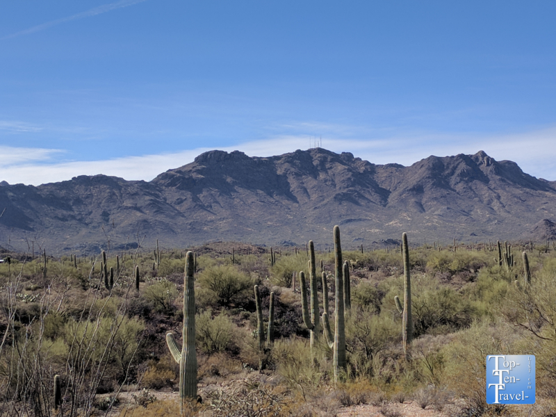 Sweetwater Preserve trail system in Tucson, Arizona