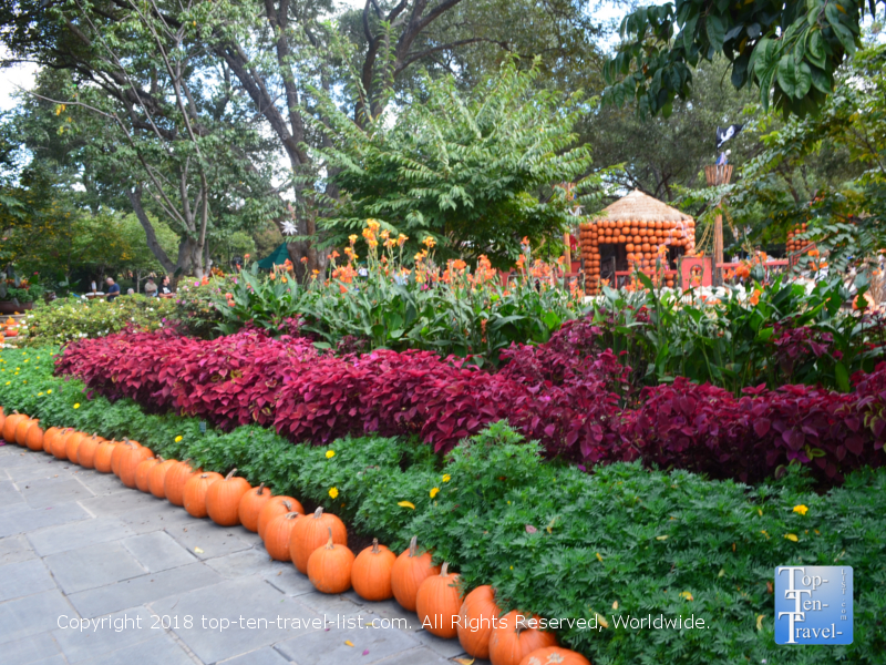 View of colorful plants along The Paseo at the Dallas Arboretum