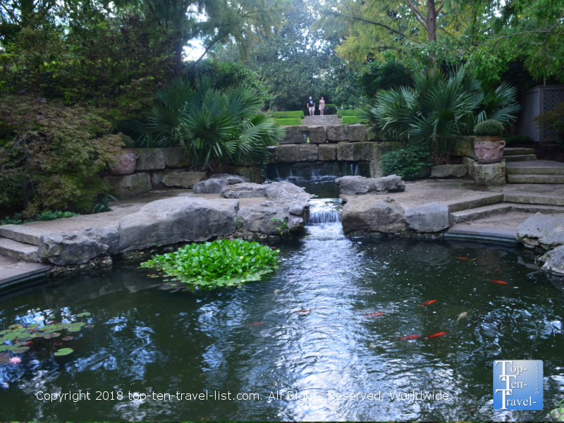 Koi pond at the Dallas Arboretum