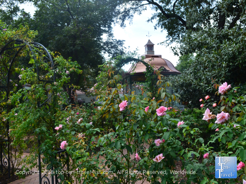 The Rose Mary Haggar Garden at the Dallas Arboretum