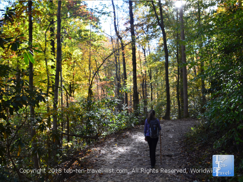 A fall stroll along the Catawba falls trail in North Carolina