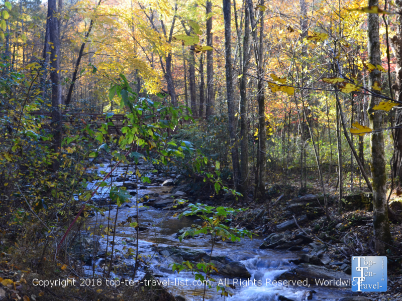 Serene views of the river along the Catawba falls trail in North Carolina