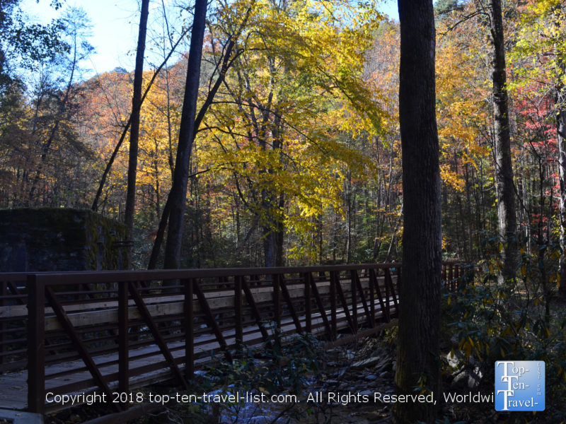 Pretty fall colors along the Catawba Falls trail in North Carolina