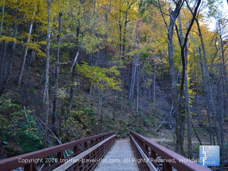 Scenic fall foliage along the Catawba falls trail in North Carolina