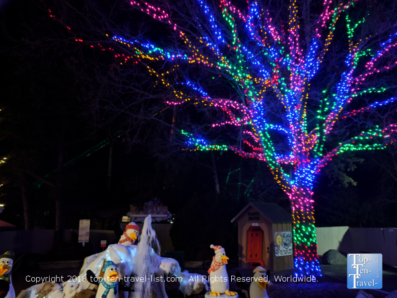 Pretty Christmas lights at Carowind's Winterfest in North Carolina