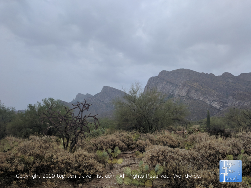 Beautiful views of the Catalina mountains via the Linda Vista traill in Tucson, Arizona