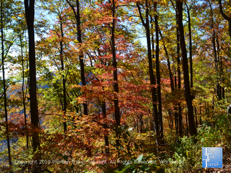 Colorful fall foliage at Caesars Head State Park in Upstate SC