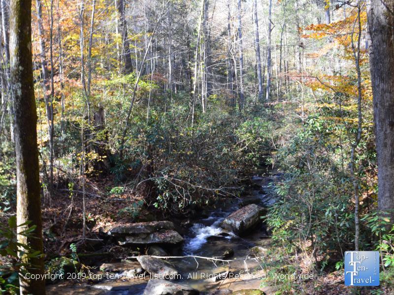 Fall foliage along the Carrick Creek trail in Upstate SC