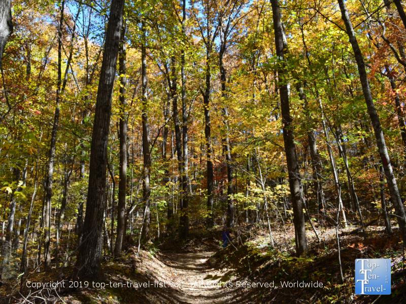 Leaf peeping at Caesars Head State Park in Upstate SC