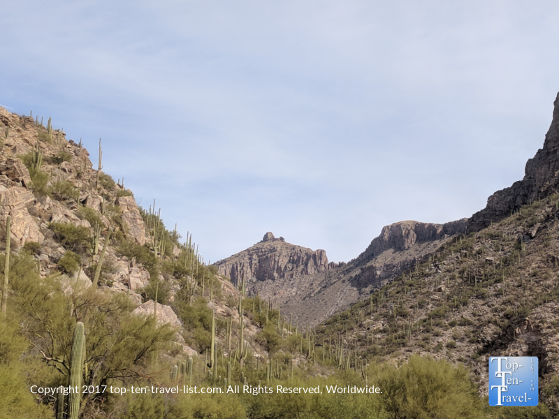 Scenic views at Sabino Canyon in Tucson, Arizona