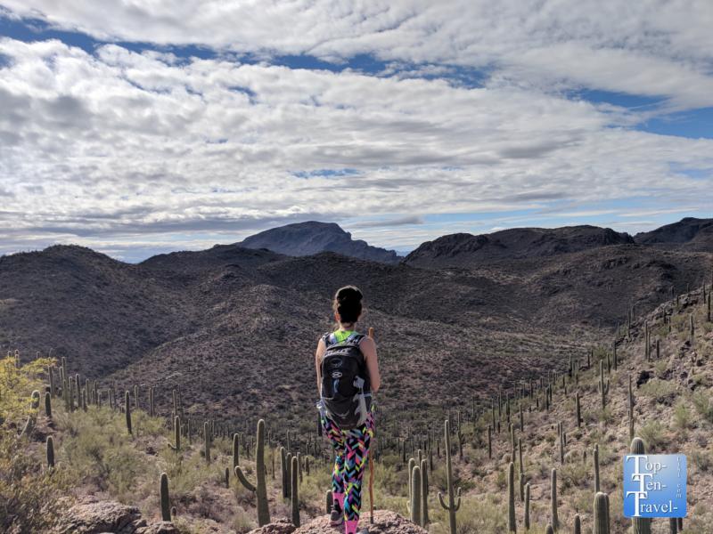 Stunning views along the Bowen Hidden Canyon trail in Tucson