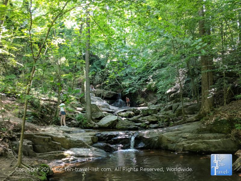 Cascade Springs Nature Preserve in Atlanta